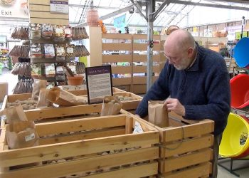 Geoff buys his seed potatoes at 'Coolings' garden centre